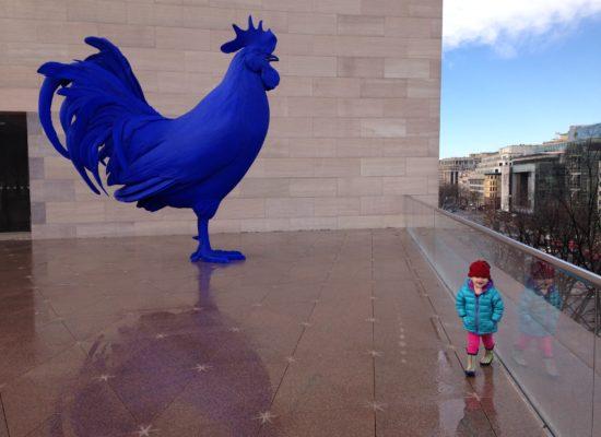 big blue chicken